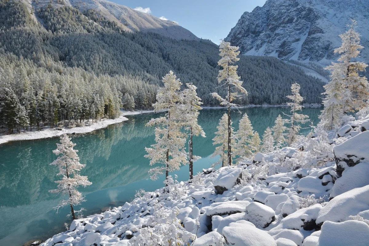 Zimnii altai