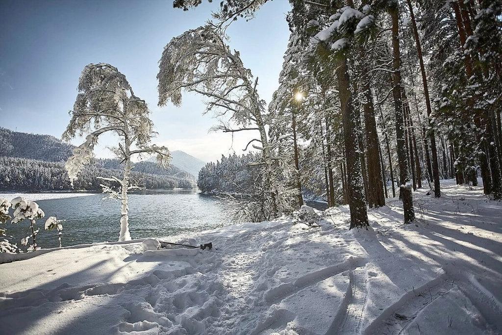 Зимний тур на Алтай