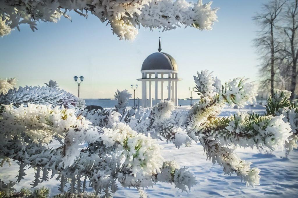 Новый год в Петрозаводске